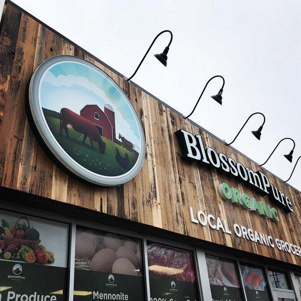 Local Food And Farm Co Operative Toronto