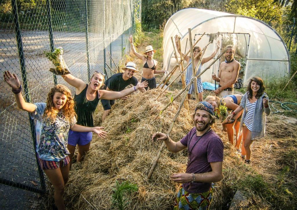 Free community dating sites worldwide organic farming